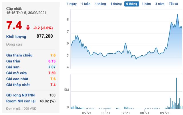 Vạn Phát Hưng (VPH) bị đình chỉ kinh doanh bất động sản trong vòng 12 tháng, Pyn Elite Fund liên tục thoái vốn ngay đỉnh - Ảnh 1.