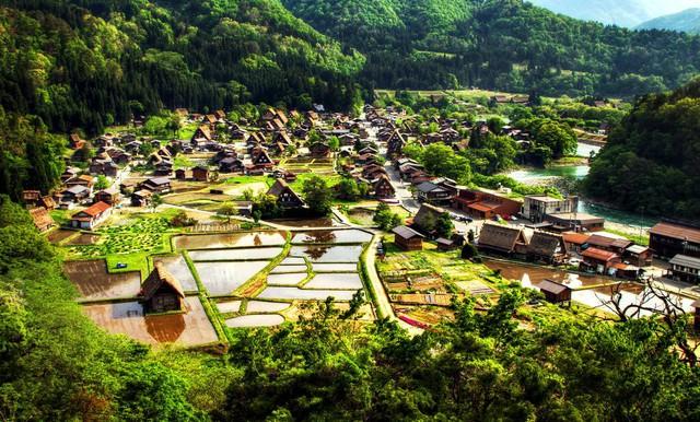 Ngẩn ngơ trước sự quyến rũ của những ngôi nhà mái dốc thuộc ngôi làng đẹp nhất Nhật Bản - Ảnh 1.