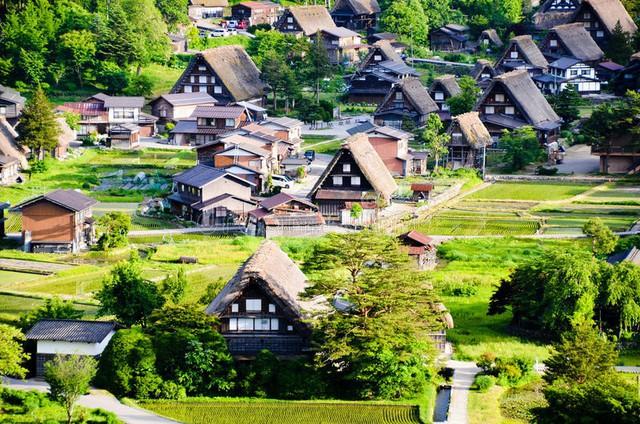 Ngẩn ngơ trước sự quyến rũ của những ngôi nhà mái dốc thuộc ngôi làng đẹp nhất Nhật Bản - Ảnh 2.