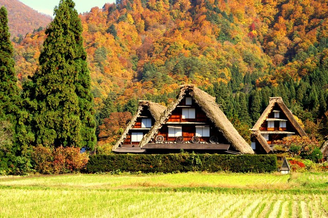 Ngẩn ngơ trước sự quyến rũ của những ngôi nhà mái dốc thuộc ngôi làng đẹp nhất Nhật Bản - Ảnh 11.