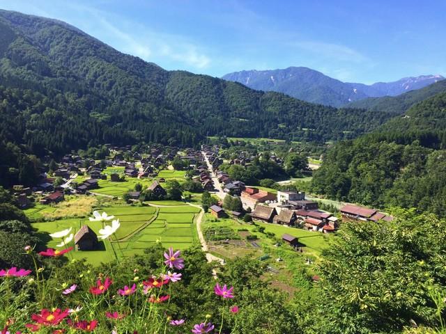Ngẩn ngơ trước sự quyến rũ của những ngôi nhà mái dốc thuộc ngôi làng đẹp nhất Nhật Bản - Ảnh 12.