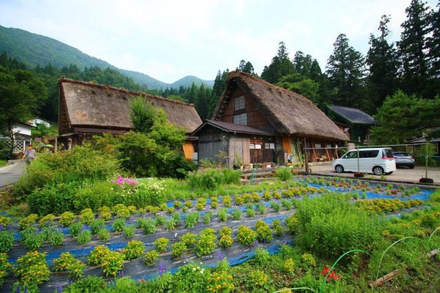 Ngẩn ngơ trước sự quyến rũ của những ngôi nhà mái dốc thuộc ngôi làng đẹp nhất Nhật Bản - Ảnh 30.