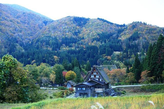 Ngẩn ngơ trước sự quyến rũ của những ngôi nhà mái dốc thuộc ngôi làng đẹp nhất Nhật Bản - Ảnh 7.