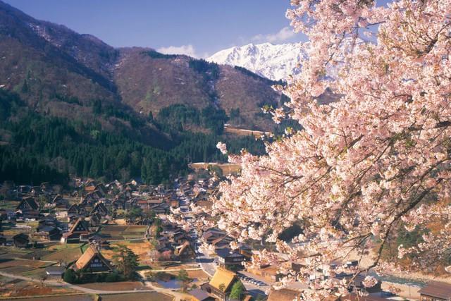 Ngẩn ngơ trước sự quyến rũ của những ngôi nhà mái dốc thuộc ngôi làng đẹp nhất Nhật Bản - Ảnh 8.