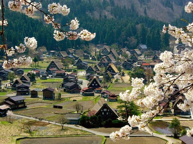 Ngẩn ngơ trước sự quyến rũ của những ngôi nhà mái dốc thuộc ngôi làng đẹp nhất Nhật Bản - Ảnh 9.