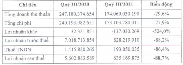 Đầu tư Everland (EVG): Quý 3 lãi chưa đến 1 tỷ đồng, giảm 90% so với cùng kỳ 2020 - Ảnh 1.