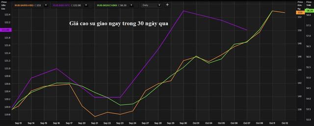 Vì sao thị trường cao su thế giới cũng phụ thuộc và khủng hoảng điện ở Trung Quốc - Ảnh 1.