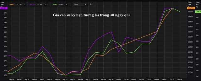 Vì sao thị trường cao su thế giới cũng phụ thuộc và khủng hoảng điện ở Trung Quốc - Ảnh 2.