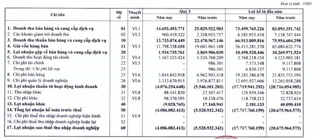 Halico (HNR) lỗ tiếp 4 tỷ đồng trong quý 3, nâng tổng lỗ lũy kế lên 462 tỷ đồng - Ảnh 1.