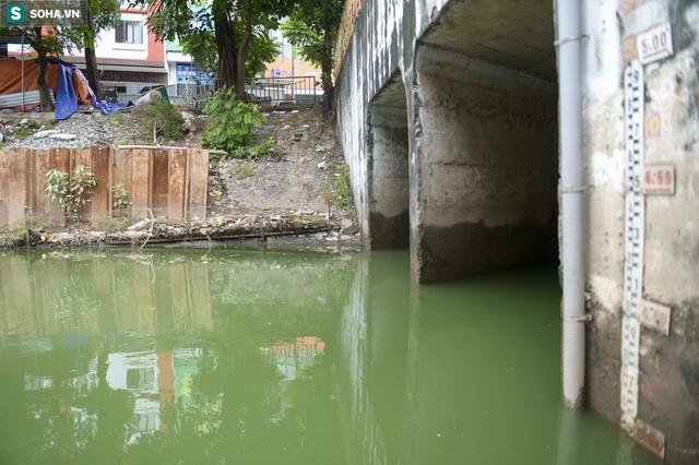 Nước sông Tô Lịch bỗng chuyển màu xanh ngắt hiếm thấy, người dân hân hoan bắt hàng tạ cá - Ảnh 1.
