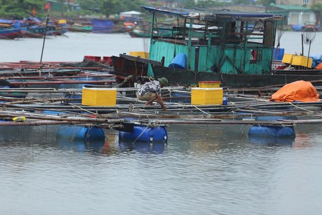 Bão số 8: Sóng cao 5m đang đánh vào bờ biển Nghệ An, hàng trăm khối đất đá sạt lở, đổ xuống quốc lộ  - Ảnh 16.