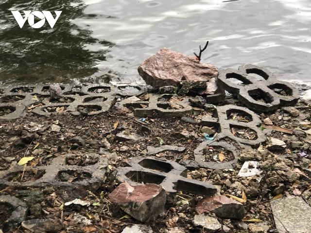 Bờ hồ Trúc Bạch giữa Hà Nội hư hỏng, nhếch nhác gây mất mỹ quan đô thị  - Ảnh 10.