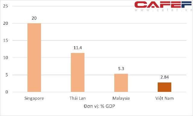Nhìn lại quy mô các gói hỗ trợ trong giai đoạn đại dịch Covid-19 của Việt Nam, Singapore, Thái Lan - Ảnh 1.