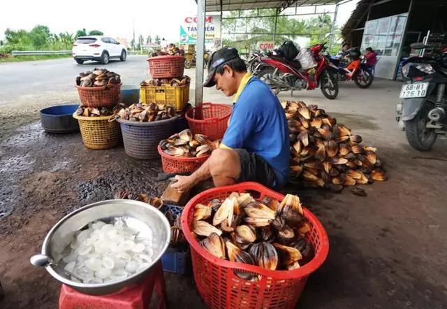 Loại quả mọc đầy ở Việt Nam nhưng lại là thực vật cấp quốc gia của Trung Quốc, được bảo tồn vì sắp... tuyệt chủng? - Ảnh 7.