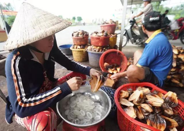 Loại quả mọc đầy ở Việt Nam nhưng lại là thực vật cấp quốc gia của Trung Quốc, được bảo tồn vì sắp... tuyệt chủng? - Ảnh 8.