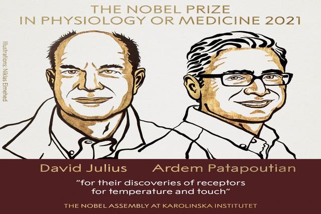 Giải Nobel Y học năm 2021 vinh danh hai nhà khoa học người Mỹ David Julius và Ardem Patapoutian  - Ảnh 1.