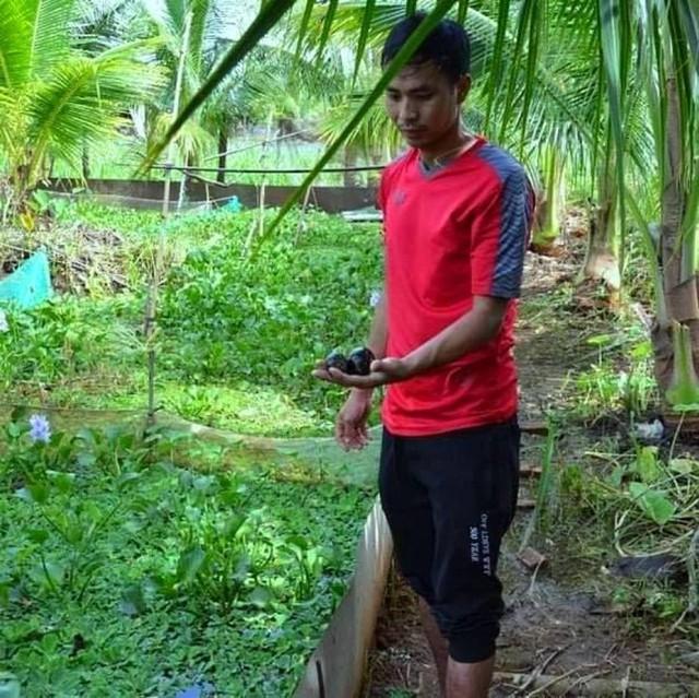 Chàng trai xứ voi thu nhập trăm triệu đồng mỗi năm nhờ nuôi ốc nhồi - Ảnh 6.