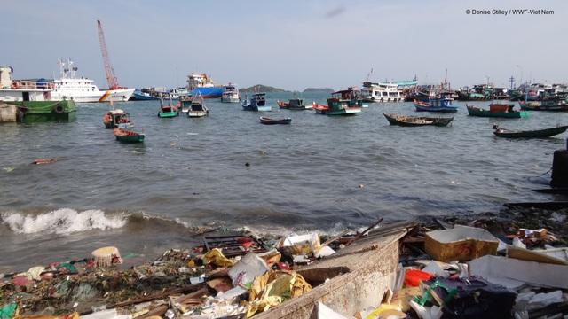 4 việc bạn có thể làm ngay hôm nay để giảm rác thải nhựa, giúp môi trường thiên nhiên thêm trong sạch  - Ảnh 2.
