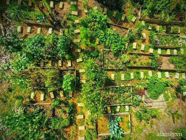 Cô gái dừng học đại học, về quê trồng cây trong khu vườn rộng 7000m² đẹp mê mẩn ở trung tâm thành phố Đà Lạt - Ảnh 2.