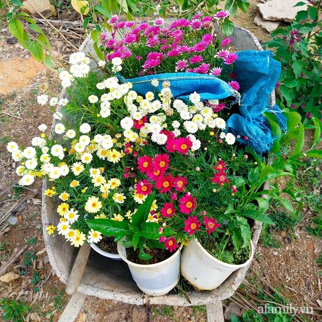 Cô gái dừng học đại học, về quê trồng cây trong khu vườn rộng 7000m² đẹp mê mẩn ở trung tâm thành phố Đà Lạt - Ảnh 9.