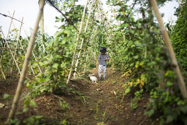 Về quê trốn dịch, nữ nhiếp ảnh mua hơn 1ha đất làm vườn, bất ngờ kiếm tiền tỷ từ sốt đất vùng ven - Ảnh 3.