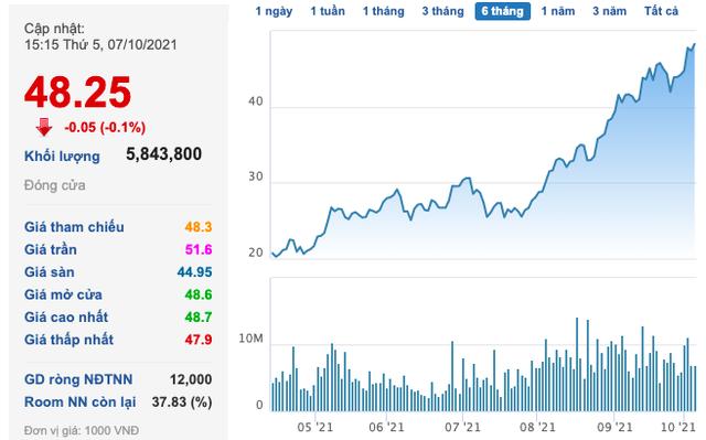 Tổng Giám đốc Nam Kim đã bán xong 15 triệu cổ phiếu NKG, không còn là cổ đông lớn - Ảnh 1.