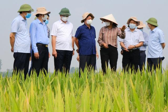 Bộ trưởng Lê Minh Hoan: Ngành nông nghiệp tiếp tục là trụ đỡ của nền kinh tế - Ảnh 4.
