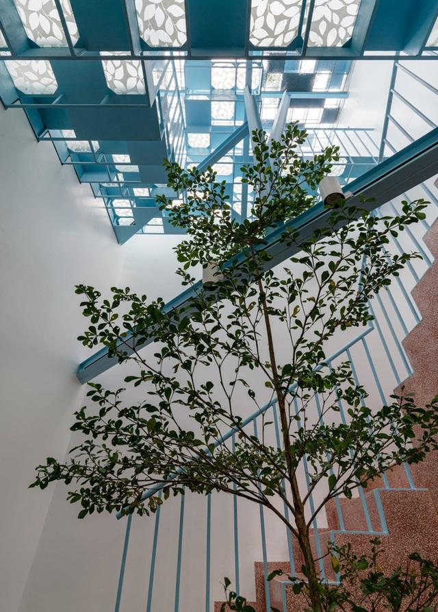 Mẹ Vĩnh Long xây nhà 140m2 cho con gái nghỉ trưa, tạo hình nhà trên cây độc đáo với sắc xanh hút hồn - Ảnh 5.
