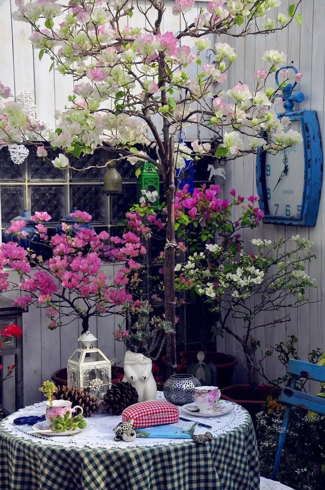 Sau nhiều năm làm việc chăm chỉ, người phụ nữ 50 tuổi mua căn nhà vườn xinh xắn sống cuộc đời an yên - Ảnh 15.