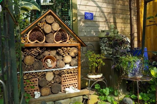 Sau nhiều năm làm việc chăm chỉ, người phụ nữ 50 tuổi mua căn nhà vườn xinh xắn sống cuộc đời an yên - Ảnh 20.