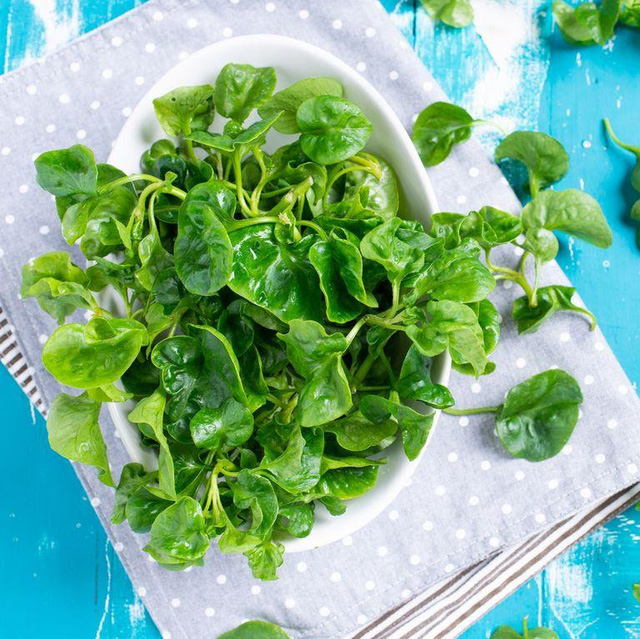 Tết Chuyên gia dinh dưỡng khuyên người sắp 40 tuổi bổ sung các loại thực phẩm tốt nhất thế giới cho sức khỏe: Giúp xương chắc khỏe, đẩy lùi lão hóa, giúp trí não minh mẫn hơn - Ảnh 5.