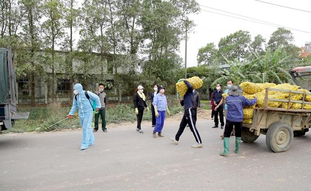 Quảng Ninh hỗ trợ tiêu thụ nông sản cho nông dân vùng bị  phong tỏa - Ảnh 1.