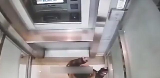 Cậu bé 5 tuổi một mình đi vào cây ATM, hành động sau đó khiến nhân viên ngân hàng kinh ngạc: Đứa trẻ này quá thông minh! - Ảnh 2.