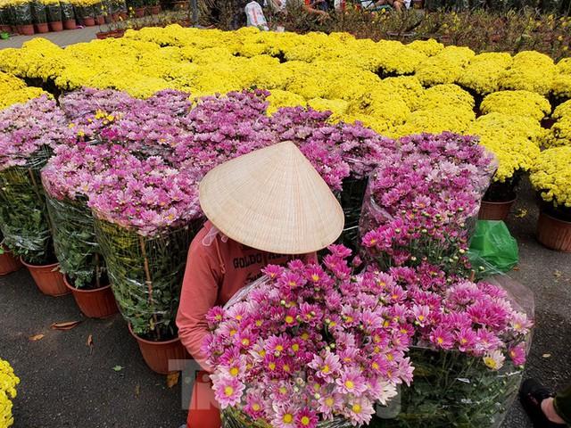 Bonsai mini độc lạ tiền triệu hút khách tại chợ hoa Tết - Ảnh 2.