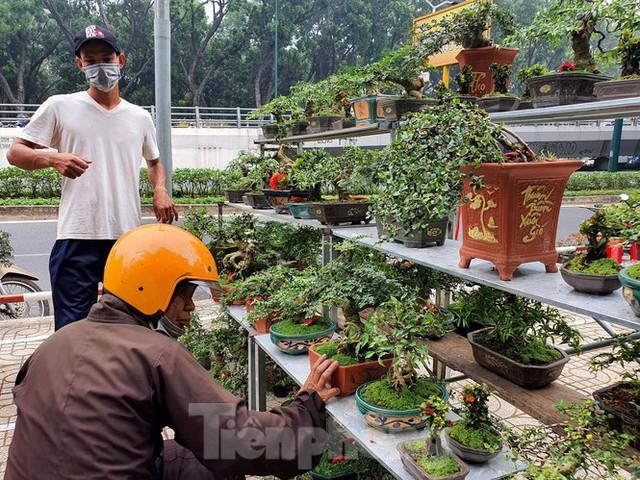 Bonsai mini độc lạ tiền triệu hút khách tại chợ hoa Tết - Ảnh 11.