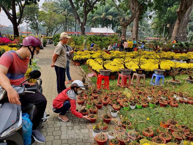 Bonsai mini độc lạ tiền triệu hút khách tại chợ hoa Tết - Ảnh 4.