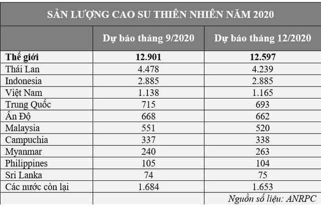 Triển vọng thị trường cao su thế giới năm 2021 - Ảnh 2.