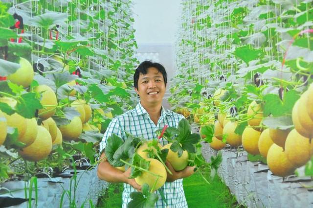 Vườn dưa lưới của chàng thạc sĩ nông nghiệp thu hút đông bạn trẻ check-in dịp Tết - Ảnh 13.