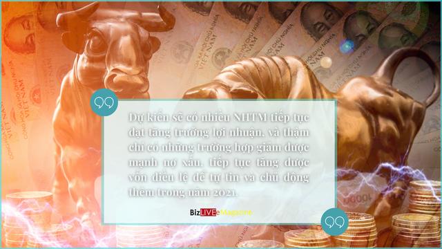 Khẳng định sức đề kháng của ngân hàng Việt - Ảnh 8.