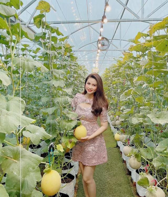 Vườn dưa lưới của chàng thạc sĩ nông nghiệp thu hút đông bạn trẻ check-in dịp Tết - Ảnh 8.