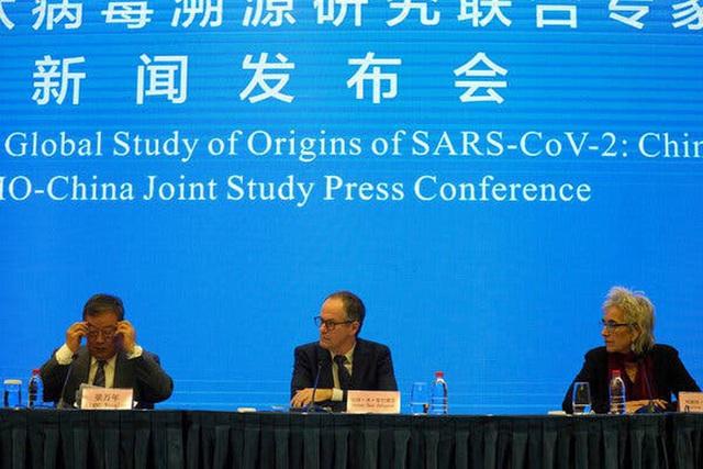 Nhóm chuyên gia WHO tiết lộ hành động khó hiểu của Trung Quốc  - Ảnh 1.