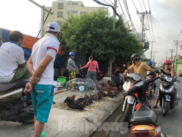 Sáng mùng 3 Tết, dân Sài Gòn xếp hàng vào siêu thị mua gà cúng - Ảnh 7.
