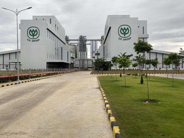 Nhà máy thức ăn chăn nuôi hiện đại nhất thế giới ở Bình Phước chỉ có 38 nhân công  - Ảnh 1.