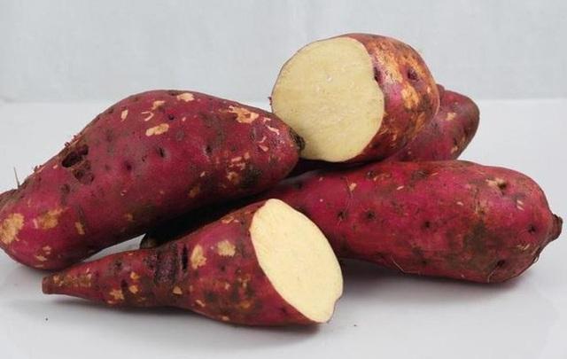 Khoai lang có tác dụng nhuận tràng, tuy nhiên nếu ăn sai cách sẽ phản tác dụng, làm tăng tình trạng táo bón - Ảnh 3.