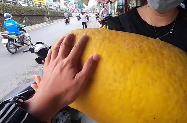 Dân mạng xôn xao loại bưởi lạ to như quả bí khổng lồ, ăn được từ vỏ đến ruột với giá lên tới 100k/kg!? - Ảnh 4.