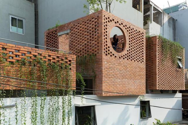 Ngôi nhà 64 m2 tại Hà Nội như một khu vườn với rau và cây ăn trái - Ảnh 1.