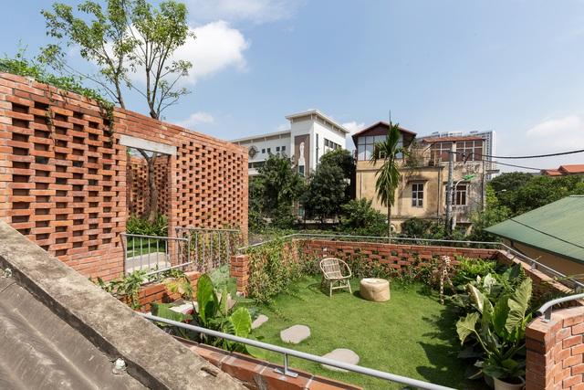 Ngôi nhà 64 m2 tại Hà Nội như một khu vườn với rau và cây ăn trái - Ảnh 2.