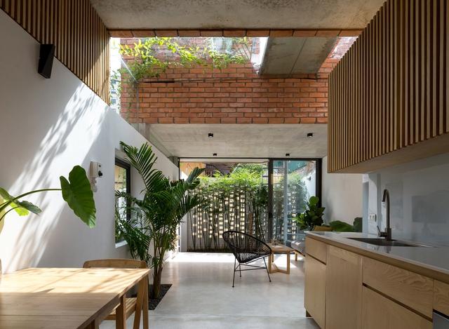 Ngôi nhà 64 m2 tại Hà Nội như một khu vườn với rau và cây ăn trái - Ảnh 3.