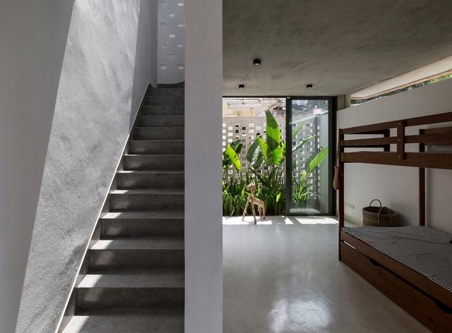 Ngôi nhà 64 m2 tại Hà Nội như một khu vườn với rau và cây ăn trái - Ảnh 6.
