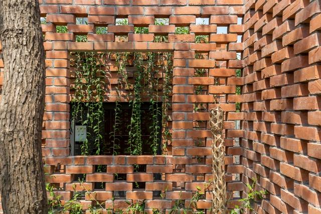 Ngôi nhà 64 m2 tại Hà Nội như một khu vườn với rau và cây ăn trái - Ảnh 8.